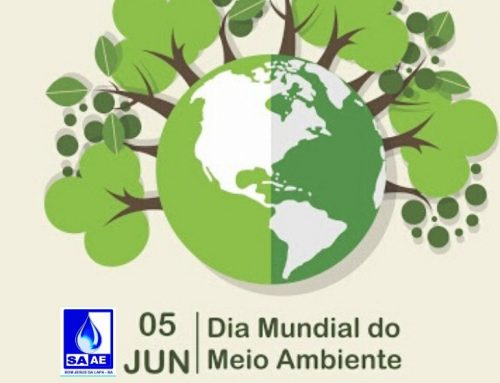 Dia Mundial do Meio Ambiente 05/06